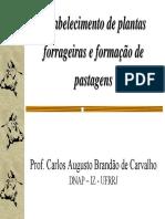 Aula_5_-_Estabelecimento_de_Plantas_Forrageiras_e_Pastagens