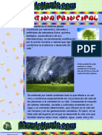 Proyecto Pagina Web_MEDIO AMBIENTE