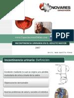 01 Incontinencia urinaria René Castillo 2007