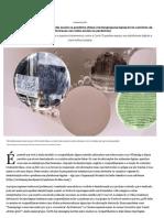Os caminhos da desinformação nas redes sociais na pandemia _ Revista Pesquisa Fapesp