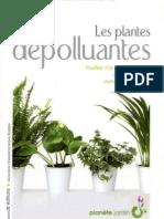 Les plantes dépolluantes Purifier l'air de la maison