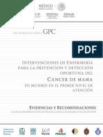 SS-743-15 Intervenciones Cancer Mama