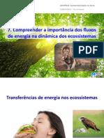 vter8_ppt7
