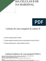 linfomas marginales