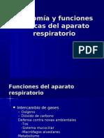Anatomía y funciones básicas del aparato respiratorio