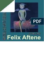 MAVG - Felix Aftene