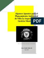 Algunos apuntes para el planeamiento de VLA y la adm. municipal2007