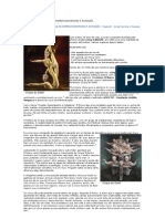 CIRQUE DU SOLEIL  AULA DE EMPREENDEDORISMO E INOVAÇÃO
