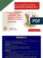 Bracale Diapositiva Metabolismo Biodisponibilita