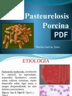 Pasteurelosis Porcina