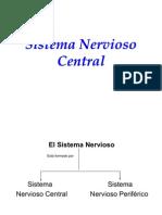 l-snc-090413182316-phpapp01 SISTEMA NERVIOSO CENTRAL