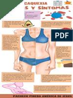 Infografía Sobre la Caquexia