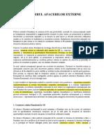 2020.12.28_program_guvernare_-_capitol_politică_externă