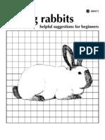 Raising Rabbits.pdf