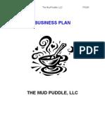Mud Puddle Business Plan