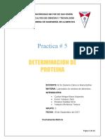 DETERMINACION DE PROTEINA #5