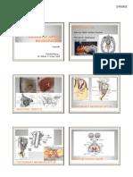Traumatic_Optic_Neuropathy_handouts