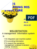 ISSUES REGARDING MIS STRUCTURE