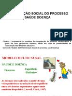 DeterminaçãoSocial 2017-1