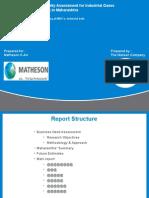 Draft report050310