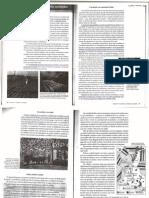 Capitulo 4 O Trabalho Nas Diferentes Sociedades Gilberto Dim en Stein