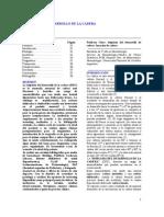 Revision - Displacia del desarrollo de la cadera