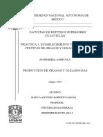 Práctica 1. Establecimiento y Manejo de Cultivos de Granos y Oleaginosas-roberto Garcia Marco Antonio