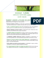 aula_033_família_(01)_cônjuges