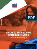 Educação Básica e Suas Práticas de Ensino