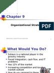 9 Organizational Strategy