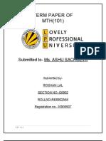 RC1901A24 Term Paper
