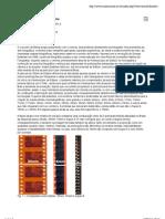 Bitolas e Formatos no Cinema