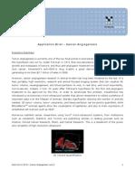 Application Brief - Cancer Angiogenesis
