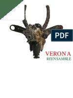 VERONA REENSAMBLE FINAL pdf