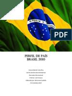 Perfil de país Brasil 2010
