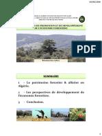 Perspectives_de_promotion_et_de_developpement_de_l_economie_forestiere
