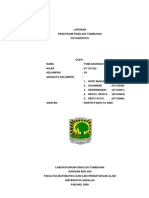 fotosintesis pdf