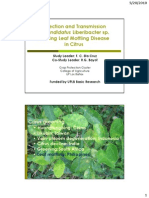 Detection and transmission of Candidatus Liberibacter sp. causing Leaf Mottling Disease in citrus