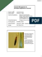 Pesticide management of Brontispa longissima in coconut