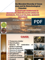 Exploration of the microbial diversity of caves in the Philippines and its biotechnological potential