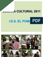 Semana Cultural 2011 4