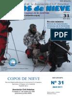 Copos de Nieve Nro 31 Abril 2011