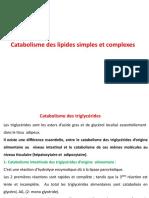 Catabolisme des lipides complexes L3 Biochimie