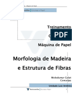 001 - Morofologia Da Madeira e Estrutura de Fi