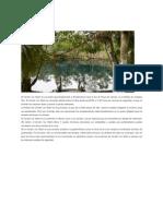 Rutamex Artículo Cenote Car Wash Quintana Roo México Publicación 20 en Scribd