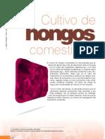 fyd52_hongos