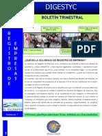BOLETÍN TRIMESTRAL SOLVENCIAS No. 1 Enero-Marzo 2011