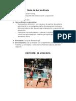 Guía de Aprendizaje Nº 2   (Voleibol)