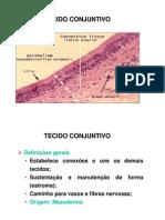 Aula tecido conjuntivo 1
