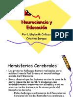 neurociencia-y-educacin-119549815928533-4